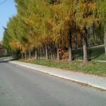 Odnowa centrum miejscowości Szczodrkowice poprzez budowę chodnika
