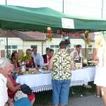 Piknik Rodzinny i dożynki w Sułoszowej