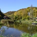 Ścieżka edukacyjna pn. Stawy rybne w Ojcowskim Parku Narodowym
